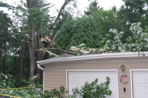 A tree branch breaks and lands on top of a garage after a severe thunderstorm Monday morning. The storm, along with high winds, left 11,700 people in DeKalb County without electricity for the majority of the day.