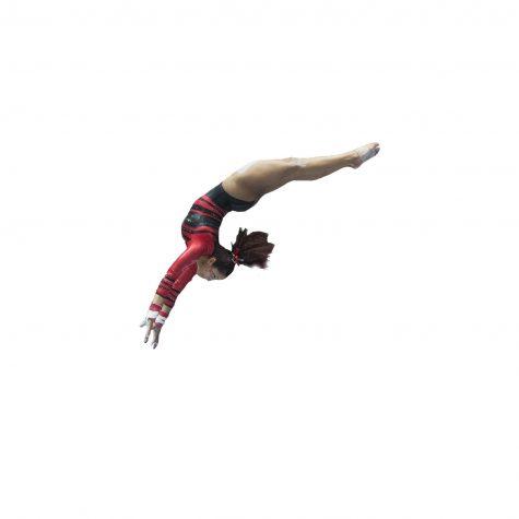 Gymnastics end season at NCAA Regionals