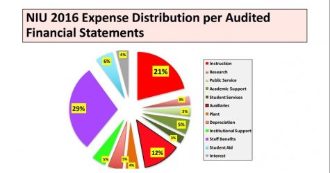 Above is a percentage breakdown of NIU's expense distribution per audited financial statements of 2016. The information was presented Thursday by Howard Bunsis, former chair of the American Association of University Professors Collective Bargaining Congress.