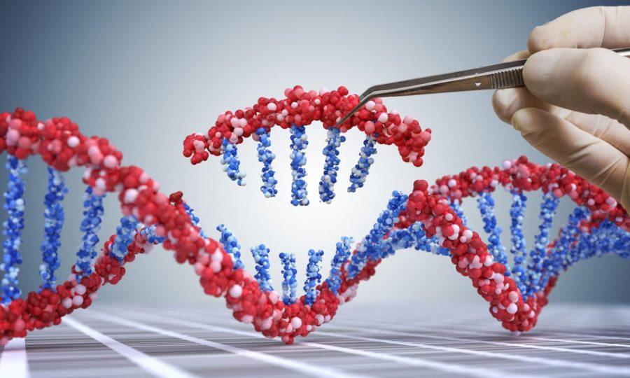 Genetic editing should slow down
