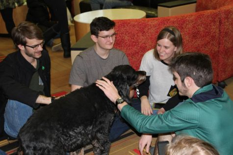 A group of students gather in the front of New Residence Hall to pet Bugsy the cocker spaniel Monday, during Hounds in the Hall, a Counseling and Consultation Services event.