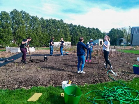 Students plan garden plots Tuesday at the Communiversity Gardens. The gardens are meant to reduce food insecurity in DeKalb, according to DeKalb County Community Gardens Director Dan Kenney.