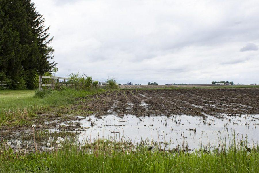 Acres+of+DeKalb+county+farmland+is+too+wet+for+tractors+to+drive+through.