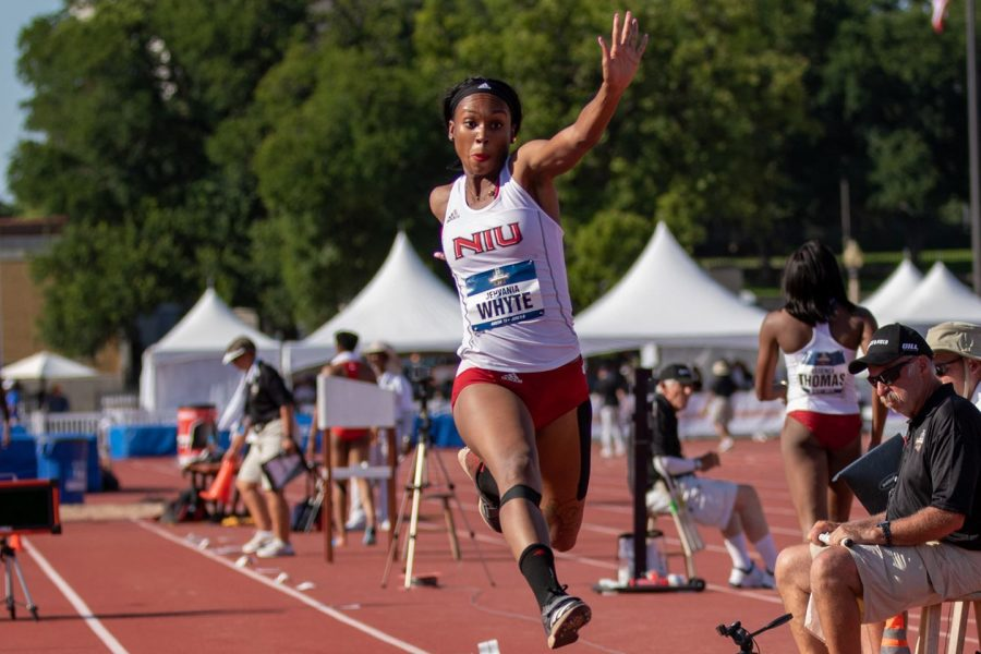 Whyte places in the top 20 at the NCAA Championships