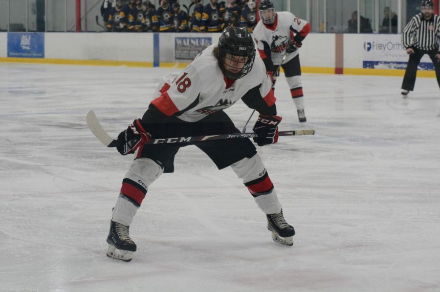 First-year forward Hunter Pierce prepares for the puck to be dropped in the Huskies Jan. 10 game against Kent State University. NIU would go on to lose the game 4-2 at Canlan Ice Sports in West Dundee.