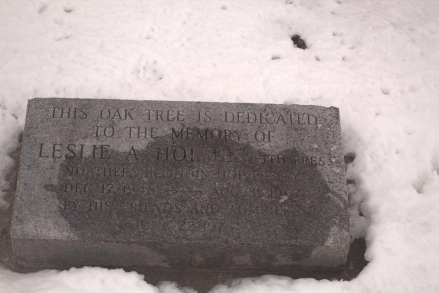 A plaque placed below the tree has Holmes' name and dedication written on it for students and anyone who walks by.