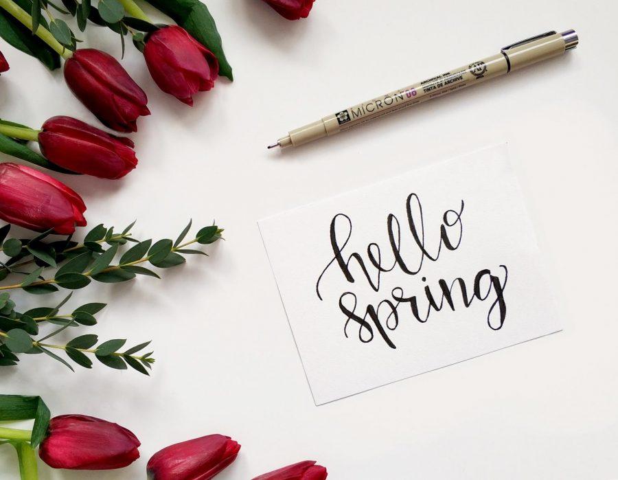 Ways+to+enjoy+spring+break+on+a+budget