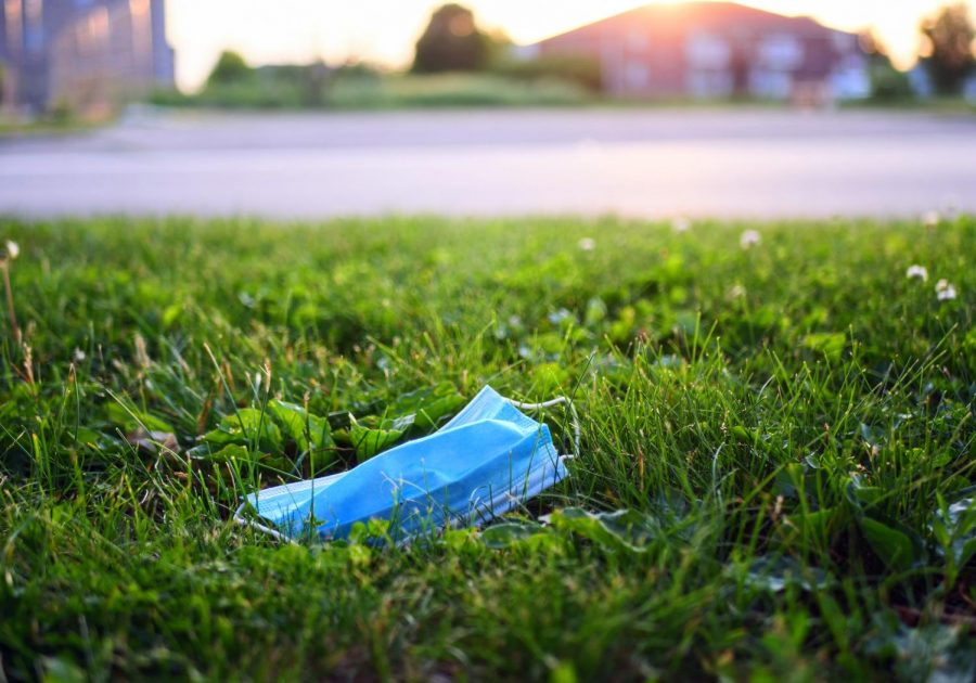 A disposable face mask lays in the grass along Blackhawn Road in DeKalb on Monday, June 8th.