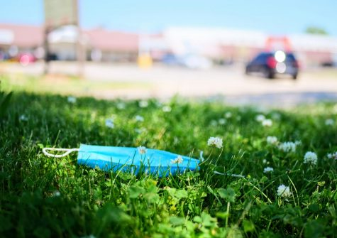 A disposable face mask lays in the grass along West Hillcrest Drive in DeKalb on Thursday, June 11th.