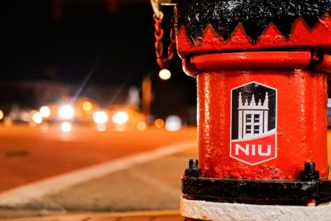 A NIU decorated fire hydrant sits grounded on the sidewalk at the intersection of First Street and Lincoln Highway in DeKalb.