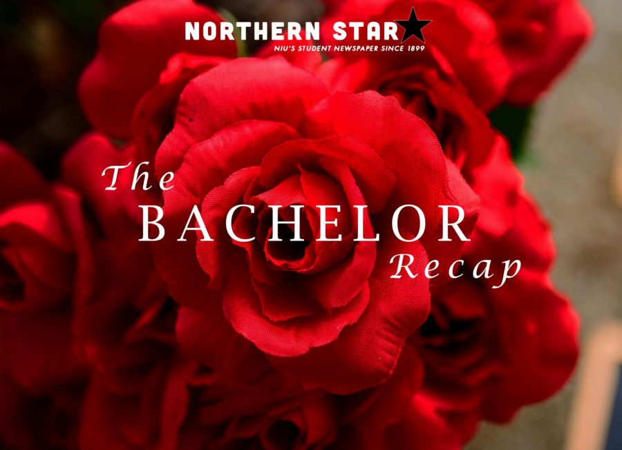 Northern Star: The Bachelor Recap S1:E3