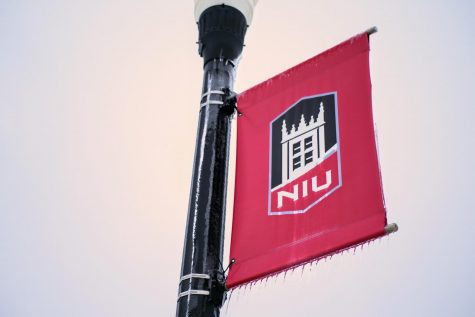 NIU street banner covered in ice on Dec. 30.
