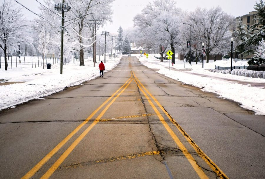A pedestrian walks down Lucinda Ave. as snow blankets NIU's campus In January.