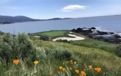 The par-3 seventh hole at Pebble Beach Golf Links.