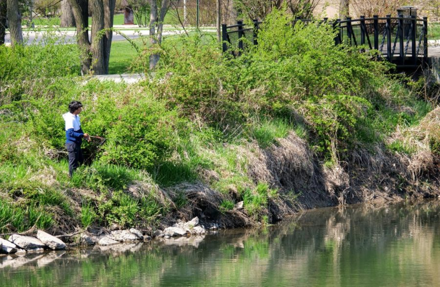 A DeKalb resident fishes in the stream Thursday next to the East Lagoon.