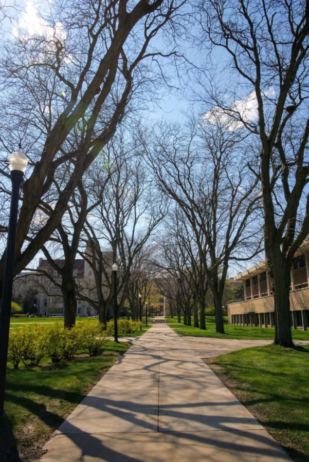 Trees cast shadows on the sidewalk Thursday outside of Lowden Hall.