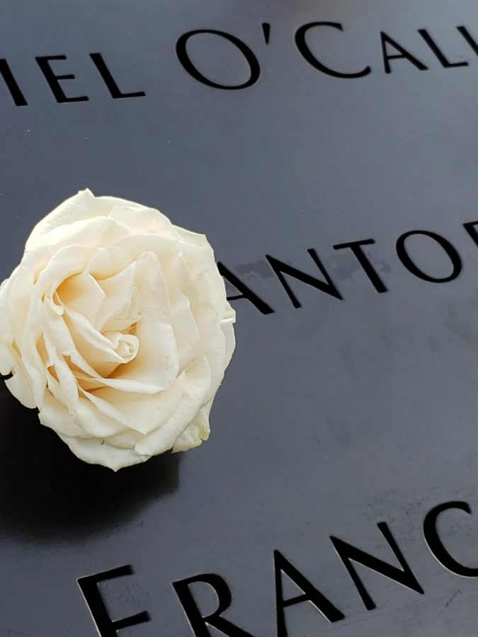 A+white+rose+is+placed+in+the+lettering+of+a+person+who+was+killed+at+the+World+Trade+Center+to+symbolize+their+birthday.