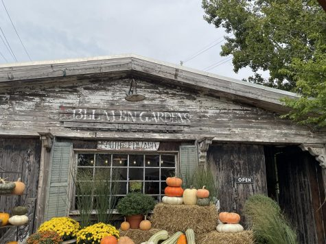 Blumen Gardens in Sycamore, will host its annual Fall Fest Saturday and Sunday. Visitors will be able to listen to live music, food and raffles.
