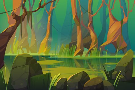 Swamp in tropical forest, fairy landscape with marsh, trees trunks, bog grass and rocks.