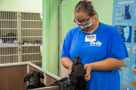 Alexis Ortiz, 21, volunteers at Tails Humane Society.